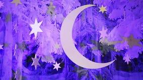 Decoraciones fantásticas del cielo nocturno del invierno con la luna y las estrellas, fondo de la nana almacen de metraje de vídeo