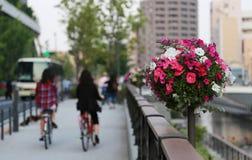 Decoraciones florales al lado de las calles en la ciudad Imagenes de archivo