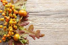 Decoraciones florales del otoño en fondo de madera Fotos de archivo libres de regalías