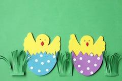 Decoraciones hechas a mano de Pascua: pollo tramado en la cáscara de huevo aislada en fondo verde Imagen de archivo libre de regalías