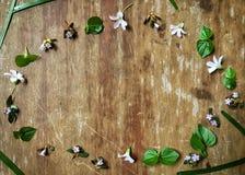 Decoraciones lindas y pequeñas de la flor en la tabla de madera Imágenes de archivo libres de regalías