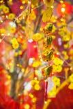 Decoraciones lunares chinas de Tet del ot del Año Nuevo, Vietnam Fotos de archivo