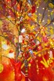 Decoraciones lunares chinas de Tet del ot del Año Nuevo, Vietnam Imagen de archivo libre de regalías