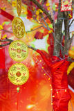 Decoraciones lunares chinas de Tet del ot del Año Nuevo, Vietnam Imagen de archivo