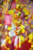 Decoraciones lunares chinas de Tet del ot del Año Nuevo, Vietnam Fotografía de archivo libre de regalías