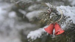 Decoraciones rojas de la Navidad con las ramas del pino almacen de metraje de vídeo