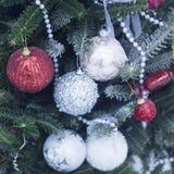 Decoraciones rojas y blancas en un árbol de navidad Fotos de archivo