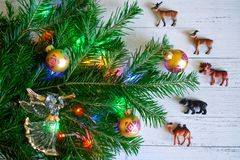 Decorado com brinquedos e luzes, um ramo da árvore de Natal n foto de stock