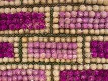Decorado com a flor do amaranto roxo Foto de Stock