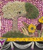 Decorado com a flor do amaranto roxo Imagem de Stock
