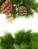 Decorações de Chrismas e cones do pinho Fotografia de Stock