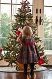 Decorando a árvore Fotografia de Stock