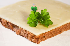 Decorando um sanduíche do queijo Foto de Stock Royalty Free