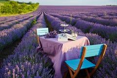 Decoração da tabela em flores da alfazema Fotografia de Stock Royalty Free