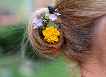 Decoração do cabelo Fotografia de Stock Royalty Free
