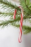 Decoração do feriado do bastão de doces Imagens de Stock