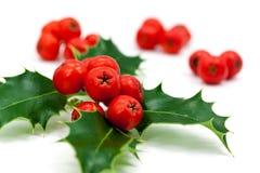 Decoração do Natal com folhas e bagas do azevinho Fotos de Stock Royalty Free