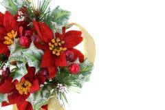 Decoração do Natal do Poinsettia com fita do ouro Imagens de Stock Royalty Free