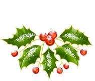 Decoração do Natal e do azevinho do vetor do ano novo Fotografia de Stock Royalty Free