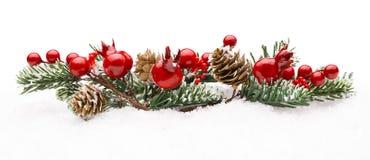 Decoração vermelha das bagas do Natal, Berry Branch Pine Tree Cone Fotografia de Stock
