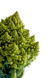 Decorate broccoflower - brocolli isolated on white background Royalty Free Stock Photo