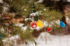 Decorate the Christmas tree on the street in winter. Royalty Free Stock Image