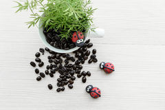 Decorate coffee. In a cup with cute lady bugs Royalty Free Stock Image