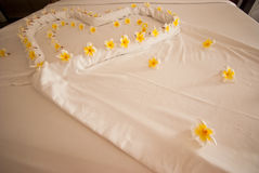 Decorate flower on the bed. This is decorate flower on the bed.this place is in east of thailand.this is very romantic place for couples royalty free stock photos