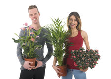 Decorate home with plants Stock Photo
