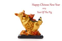 Decorate Pig 2019 Lunar New Year. Decoration Pig 2019 Lunar New Year and Chinese New Year on white background, Empty space for design stock images