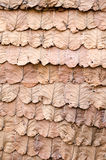 Decorate the walls with dry leaves Royalty Free Stock Photos