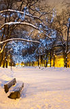Decorated alley at christmas in Tallinn, Estonia. An empty but snowy bench at the left side of snowy alley with christmas lights on trees Stock Photography