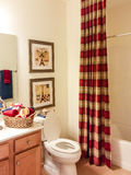 Decorated Bathroom with Tub and Toilet Royalty Free Stock Image