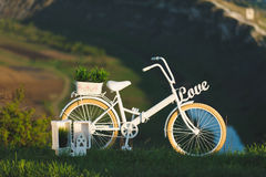 Decorated Bicycle Royalty Free Stock Photography