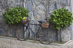 Decorated bike Stock Images