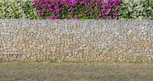 Decorated Bougainvillea flower wall Royalty Free Stock Photography