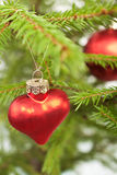 Decorated branch of Christmas tree Royalty Free Stock Photography