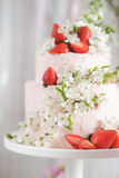 Decorated cake Royalty Free Stock Photography