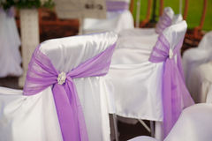 Decorated chairs at the wedding Royalty Free Stock Photography