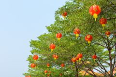 Chinese lanterns during new year festival Stock Photos