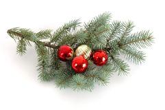 Decorated Christmas Bough. Blue spruce bough decorated with christmas ornaments Stock Photography
