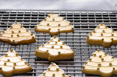 Decorated christmas cookies on the backing tray Stock Images