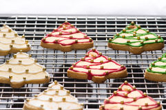 Decorated christmas cookies on the backing tray Royalty Free Stock Photo