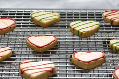 Decorated christmas cookies on the backing tray Stock Photos