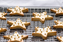 Decorated christmas cookies on the backing tray Stock Image