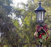 Decorated Christmas Lamppost. A decorated Christmas Lamppost with a Forest Background Royalty Free Stock Photo