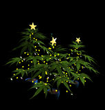Decorated Christmas Marijuana Trees Stock Photos