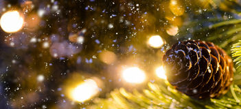 Decorated Christmas or New Year fir tree Stock Image