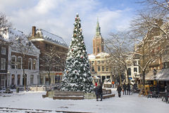 Decorated Christmas Tree. Large decorated Christmas Tree covered with snow on town plaza. Picture taken on December 20, 2010 in The Hague, Holland stock photos
