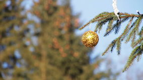 Decorated Christmas tree on background blue sky. Beautiful, big, tall, decorated Christmas tree with Christmas toys, balls, garlands and various ornaments stands stock video